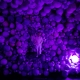 Daniel Arsham Amethyst Ball Cavern 2016 MOCO Museum Amsterdam